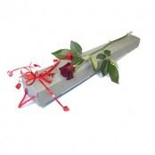 A SINGLE RED ROSE IN A GIFT BOX